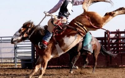 Here Are 3 of the Best Rodeos in TX