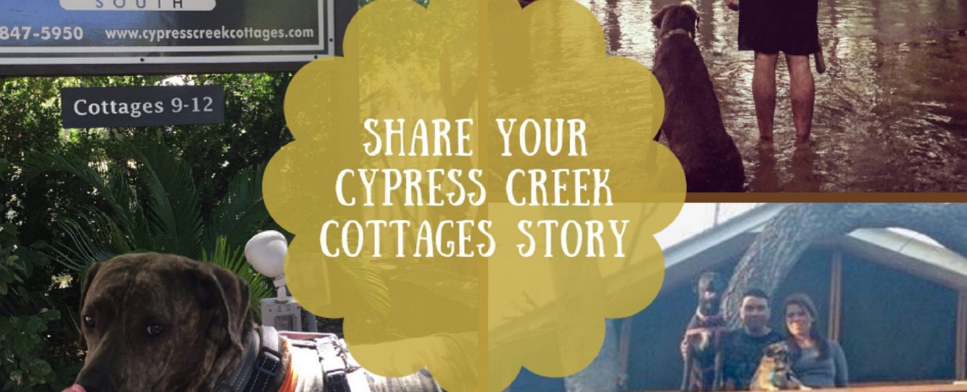 Tell Us Your Cypress Creek Cottages Story 1500x609@2x Scaled